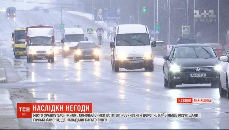 Львов заснежило: горожане приветствуют друг друга с первым снегом в конце января
