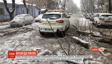 Непогода обесточила 269 населенных пунктов в Сумской области