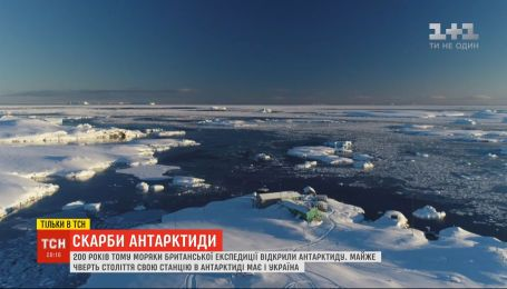 """""""Сокровища Антарктиды"""": почему россияне пытаются доказать свое первенство в открытии этого континента"""