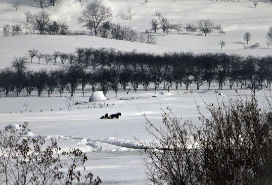 У Румунії стався землетрус, який дістався Одеської області