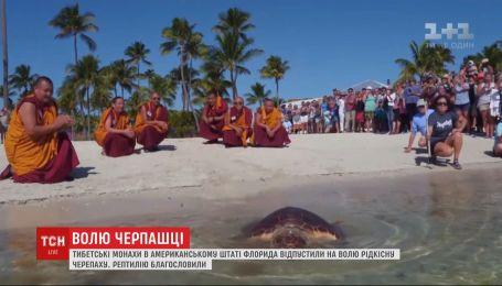Тибетські монахи під час ритуалу відпустили на волю черепаху у США