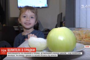 Чеснок и лук: сколько стоят на украинских рынках и действительно ли обладают целебными свойствами