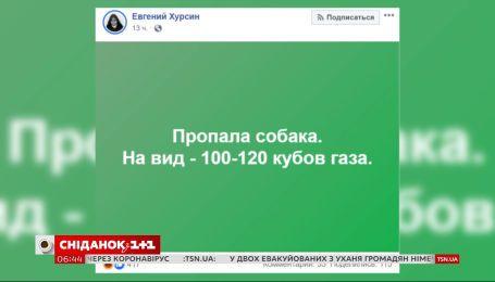 Як користувачі соцмереж відреагували на пропозицію Євгенія Брагаря продати пенсіонерці собаку
