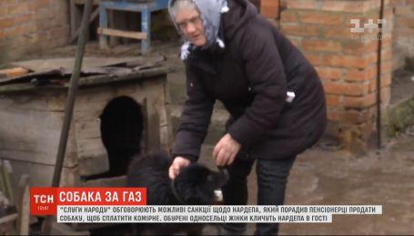 """Пенсионерка показала своего """"элитного пса"""" Шарика, которого ей посоветовал продать Брагар"""