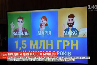 В Украине стартует государственная программа доступных кредитов для малого бизнеса