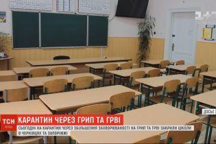 Школи у Чернівцях та Запоріжжі закрили на карантин через грип та ГРВІ