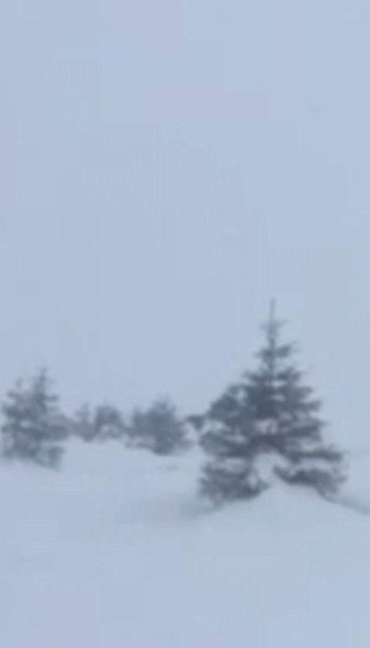 В Украину наконец движется зима: синоптики предупреждают об обильных осадках