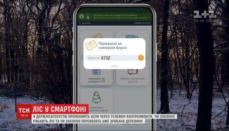 Лес в смартфоне: в Гослесагентстве предлагают контролировать лесное хозяйство онлайн