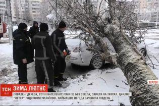 Поваленные деревья и сотни обесточенных населенных пунктов: последствия непогоды в Украине