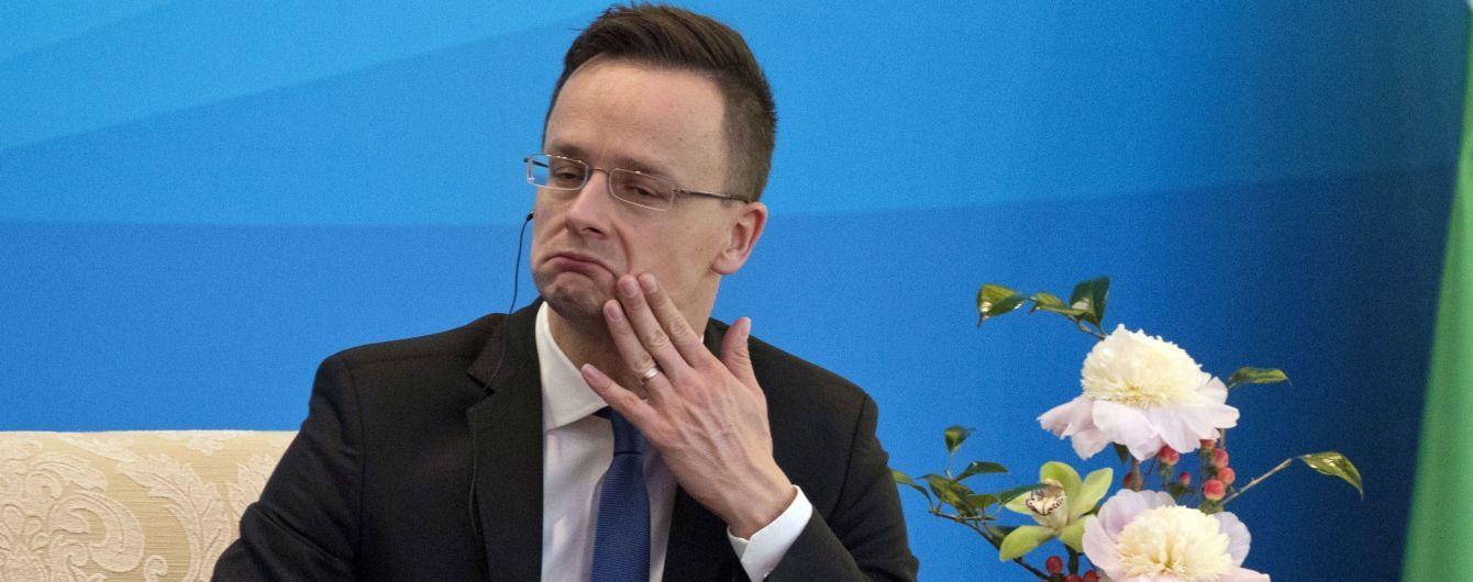 Глава венгерского МИД в день выборов призвал венгров Закарпатья поддержать одну из партий