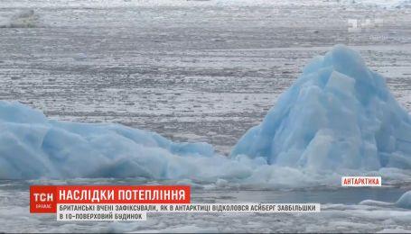 18 градусів тепла: в Антарктиді зафіксували новий температурний рекорд