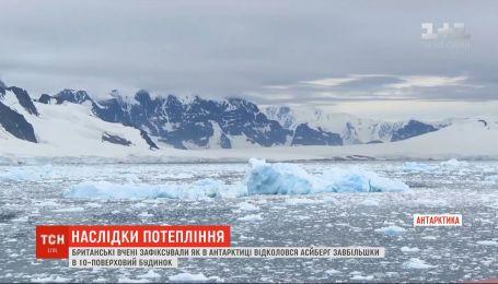 Огромный айсберг откололся в Антарктике из-за повышения температуры