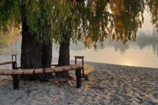 Дерево, возле которого снимался музыкант Виктор Цой, получило в столице охранный статус