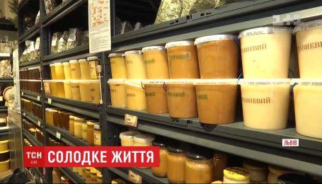 Скільки коштує український мед та як відрізнити якісний продукт від підробки