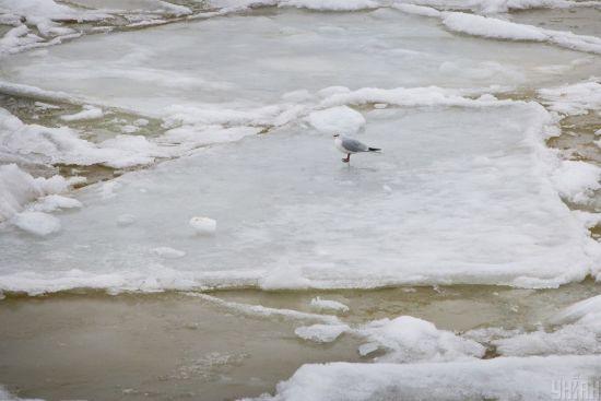 У Харківській області під лід провалилися троє дітей. Живим з води витягли лише одного