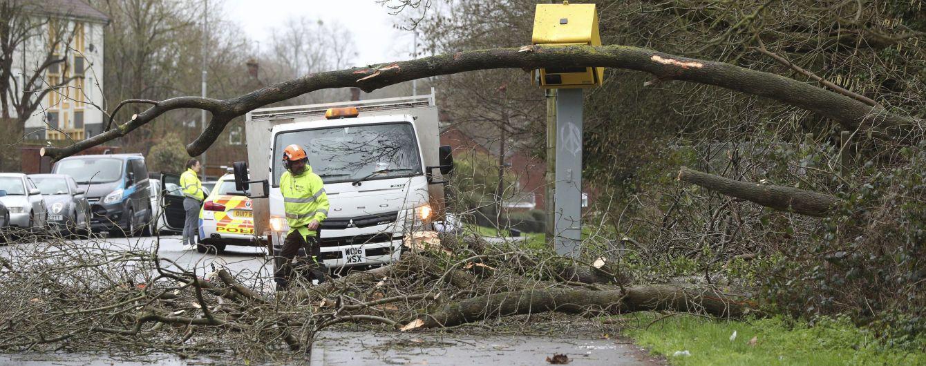 Повалені дерева, пошкоджені автомобілі та заблоковані дороги: в Австрії вирує ураган