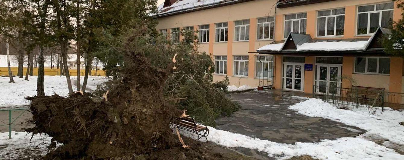 На Заході України вирує шквальний вітер: повалені дерева та знеструмлені будинки без дахів