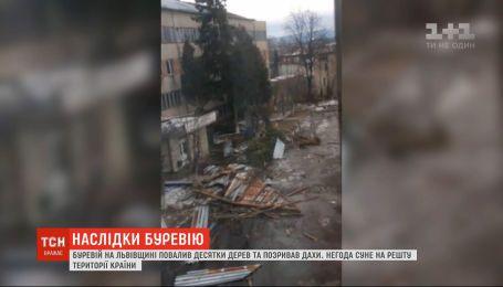 Пошкоджені покрівлі та повалені дерева: негода накоїла лиха у Львівській області