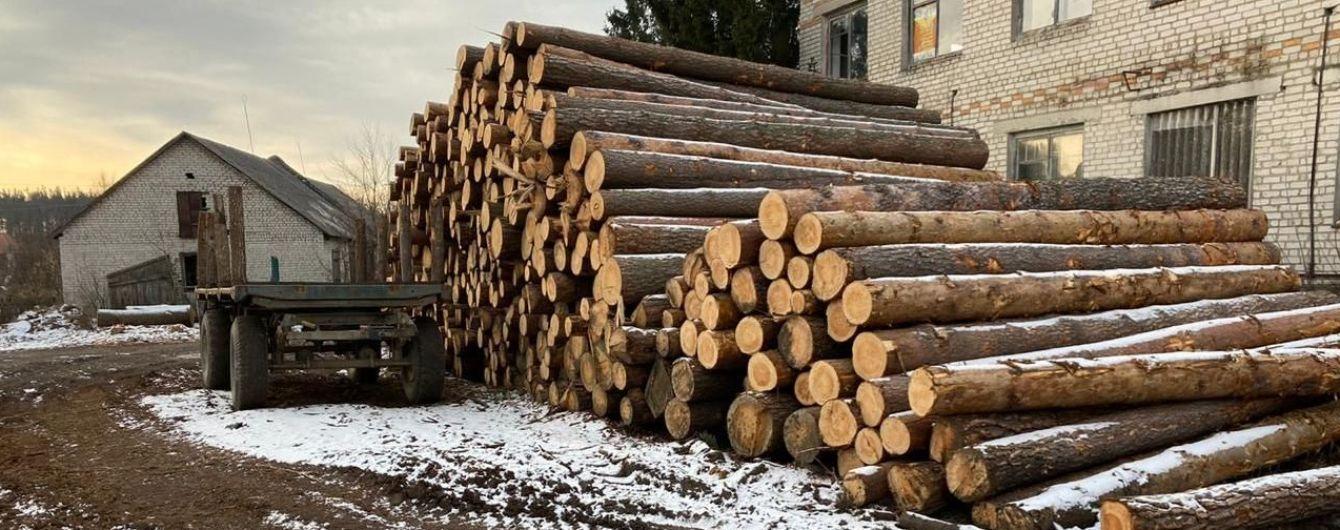 В Житомирской области разоблачили незаконную вырубку лесов на более 6 млн гривен