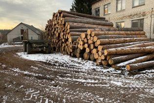 У Житомирській області викрили незаконну вирубку лісів на понад 6 млн гривень