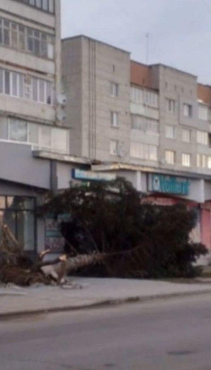 Сильный ветер во Львовской области повалил билборды, выкорчевал деревья и сорвал крыши