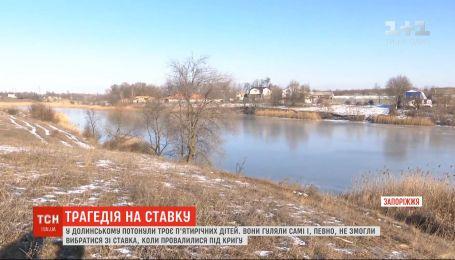 5-летние мальчики и девочка утонули в пруду в Запорожской области