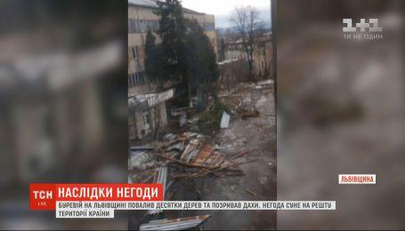 Десятки поваленных деревьев и сорванных крыш: во Львовской области вторые сутки бушует непогода
