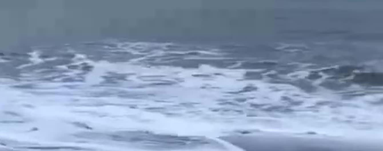 Савченко у червоній сукні скупалася в Північному Льодовитому океані з морським котиком