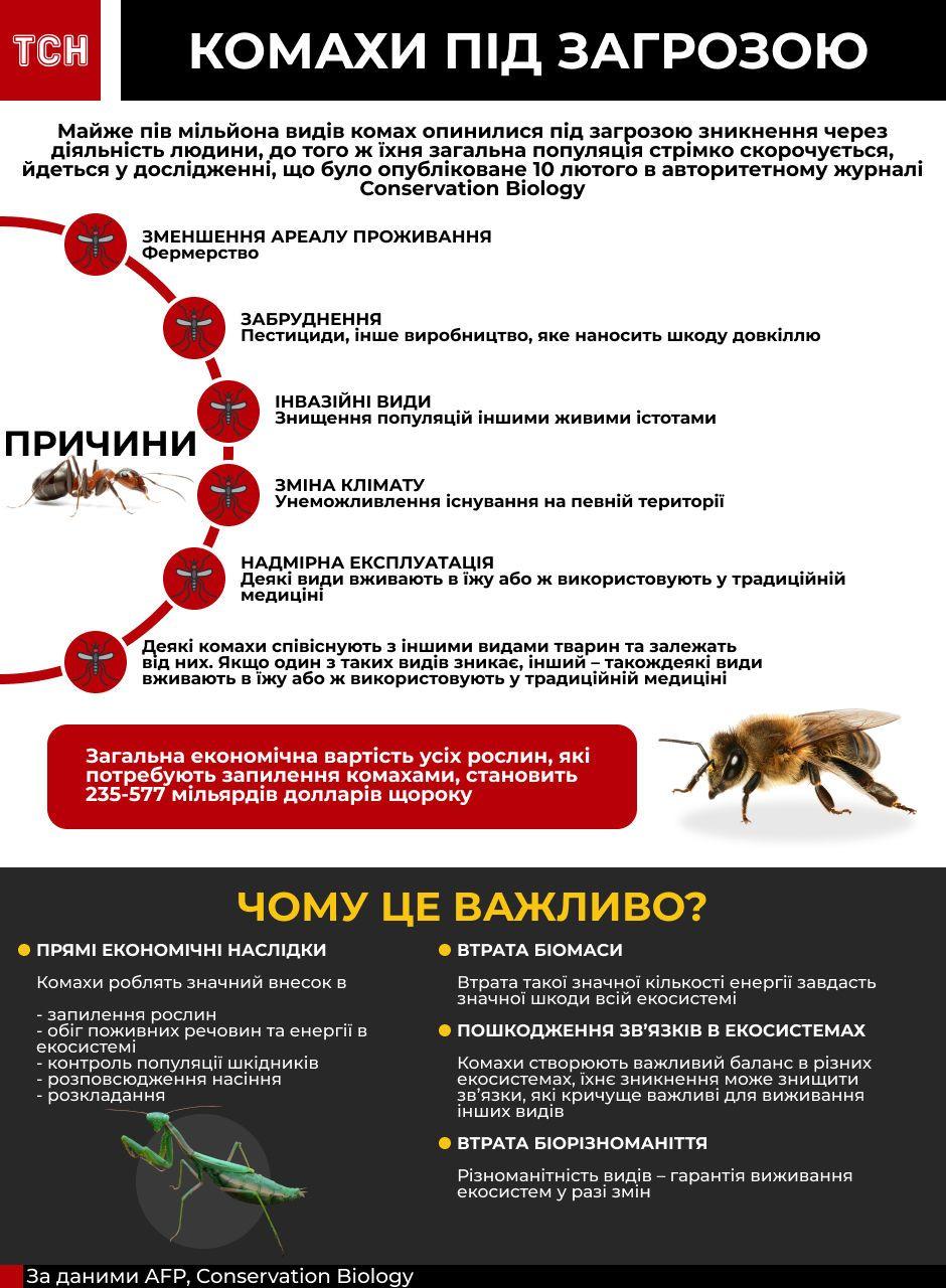 Вимирання комах інфографіка