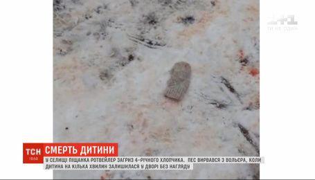 Ротвейлер загрыз 4-летнего мальчика в Харьковской области