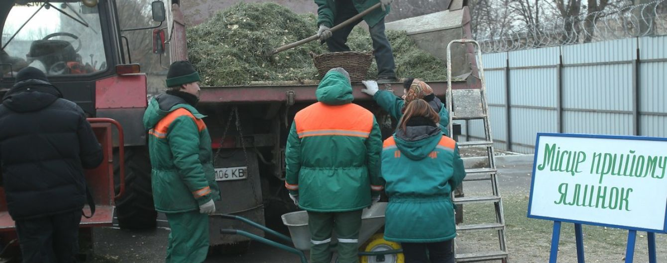 Экологическая утилизация новогодних елок: киевляне сдали на переработку рекордное количество деревьев