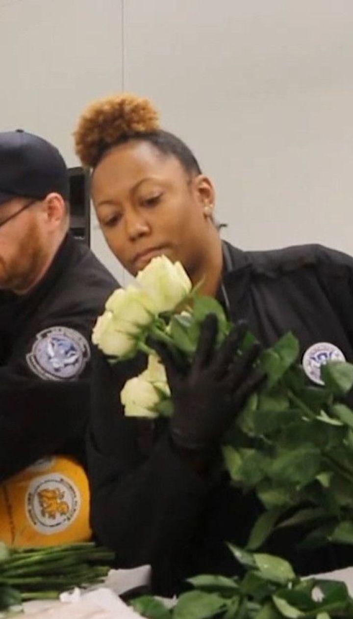 До Дня святого Валентина на американських митницях ретельно перевірять мільйони квітів