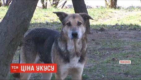 У Миколаєві суд зобов'язав міську раду виплатити 60 тис. грн жінці, яку покусав безпритульний пес
