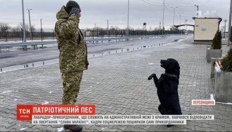 """Прикордонники навчили собаку відповідати на лозунг """"Слава Україні"""""""