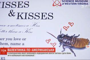 Валентинка по-американськи: що робити, якщо набридло традиційне святкування Дня закоханих