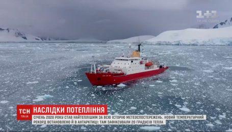 """Самый теплый январь и """"жара"""" в Антарктике: глобальное потепление набирает обороты"""