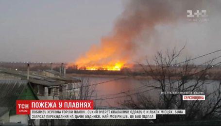 Пожежа сталась у плавнях під Херсоном: надзвичайники підозрюють підпал