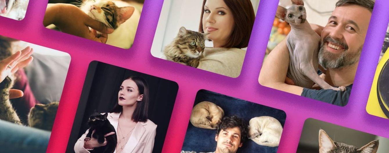 День кота: кто из украинских звезд имеет домашних любимцев