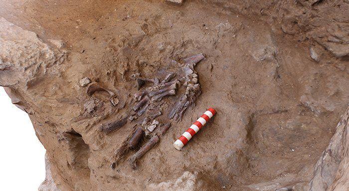 Кістки неандертальця_1