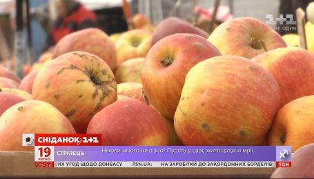 Які сорти яблук краще купувати взимку та скільки вони коштують