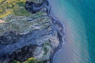 Арктика существенно позеленела - ученые обеспокоены. Рассказываем, почему это плохо