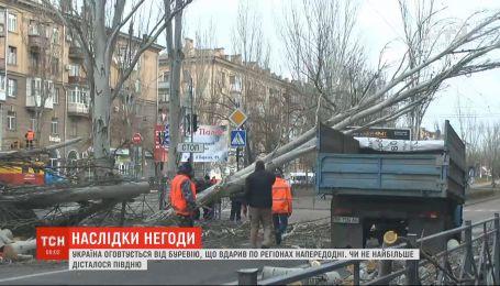 Поваленные деревья, разбитые машины и дома: Украина оправляется от урагана