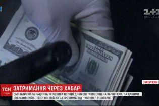 """СБУ затримала керівника поліції під час отримання хабара від """"чорних"""" ріелторів"""