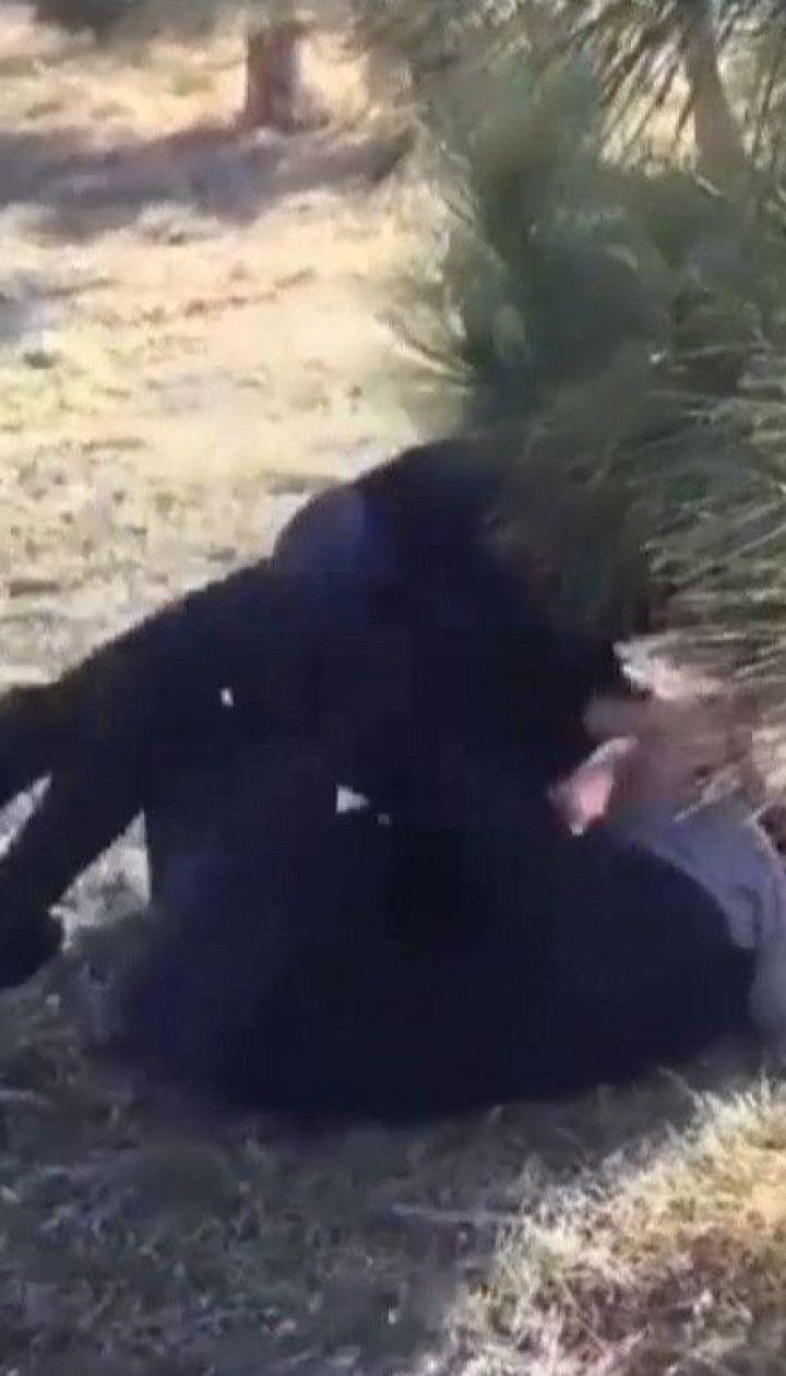 Соцмережами шириться відео, на якому 12-річну дівчинку в Одесі жорстоко б'є ровесниця