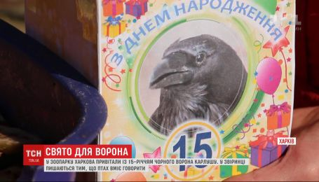 Ворон Карлуша, який уміє говорити, відзначив 15-річчя у зоопарку Харкова