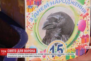 Ворон Карлуша, который умеет говорить, отметил 15-летие в зоопарке Харькова