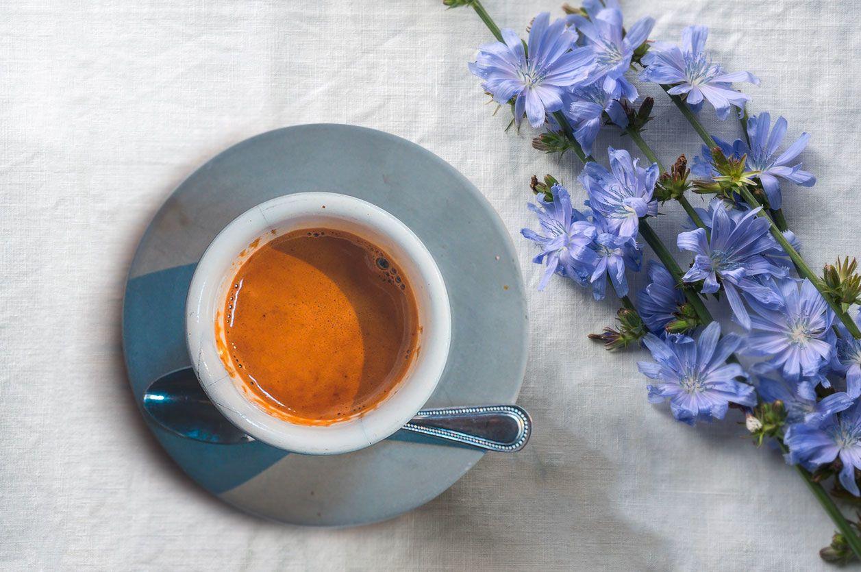 Цикорій, чашка з цикорієм