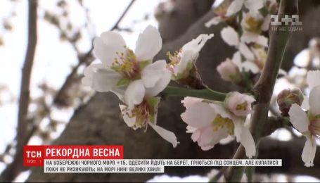 Сонячні регіони: ТСН проінспектувала березневу погоду у різних куточках України