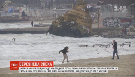 До +20 тепла: мартовская погода в Украине бьет рекорды