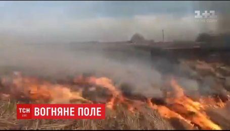 10 гектаров полей горят в Черниговской области: подозревают неосторожное обращение с огнем
